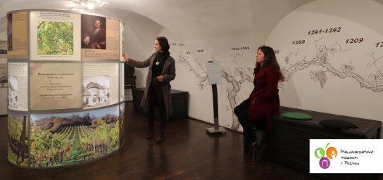 Malokarpatské múzeum v Pezinku