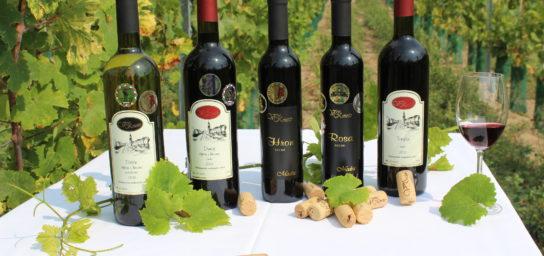 Vinotéka Víno Kmeťo