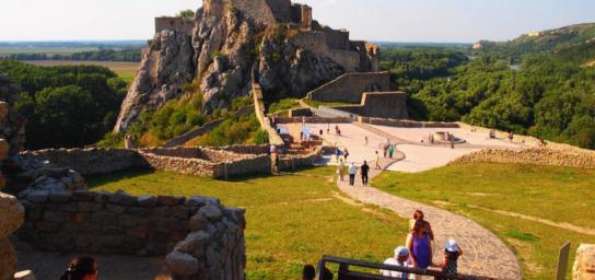 Burg Devín & Ribiselwein-Kostprobe
